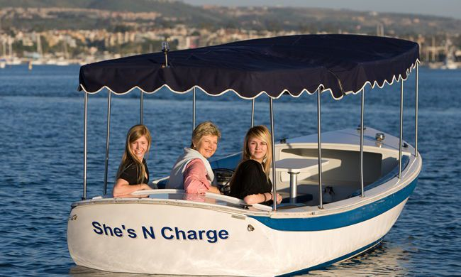18 Duffy Electric Boat With Surrey Top